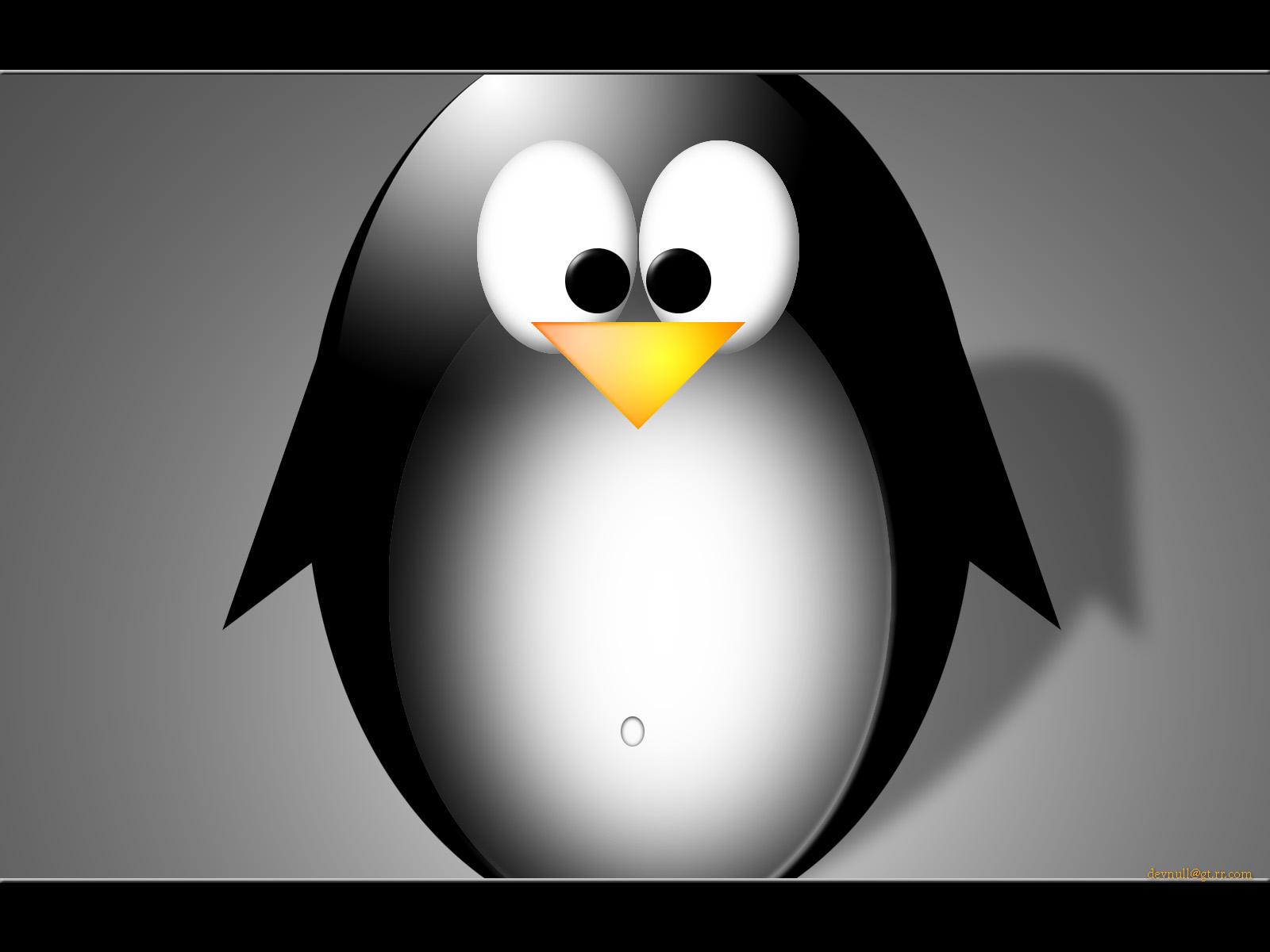 Rom o le pingouin - Pingouin rigolo ...